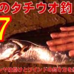 """【化け物襲来】堤防のタチウオ釣りで""""F7""""が釣れたからタチウオテンヤ仕掛けとワインドの釣り方を紹介"""
