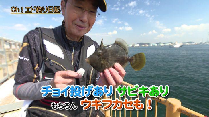 『Oh!エド釣り日記 エド流 海釣り公園の楽しみ方』【番組紹介】