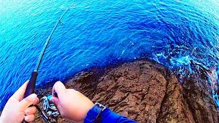 【加計呂麻島】磯釣り|ルーティン|VLOG