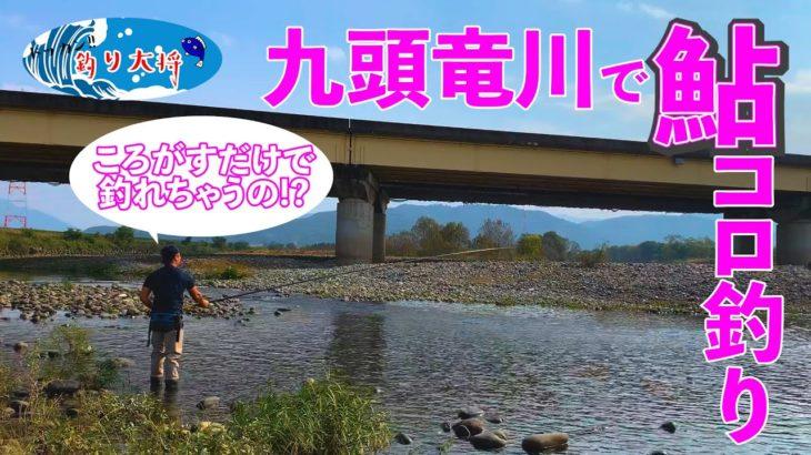 九頭竜川で鮎の「コロ釣り」!