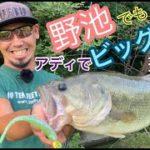 イヨケン☆岡山バス釣り出張!!やっぱり釣っちゃうイヨケンって凄い!?