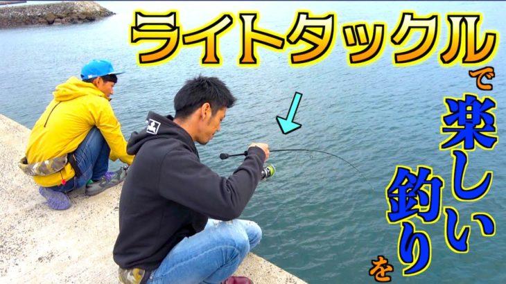 晩秋の堤防はライトタックルでどんな魚が釣れる?