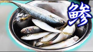 テレビで見てビックリした日本料理を釣ってきた魚で再現してみた!