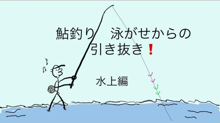 鮎釣り 友釣り 泳がせ釣りからの引き抜き❗️水中編
