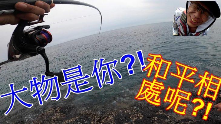 乾潮底不會咬? 咬爆啦! 滿滿的鸚哥魚!!!【澎湖外礁】【澎湖磯釣】【大緯釣魚趣】