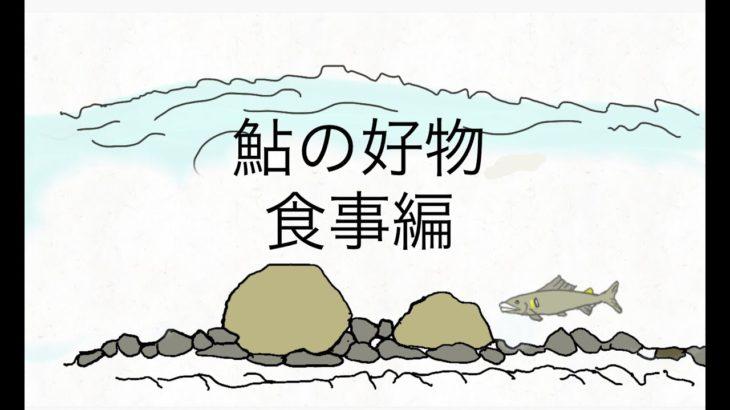 鮎の生態 食事編
