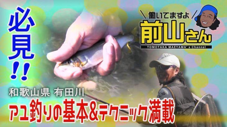 鮎釣りますよ!前山さん! #鮎 #釣り #有田川