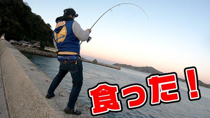 堤防から巨大ボイルにジグを投げると…