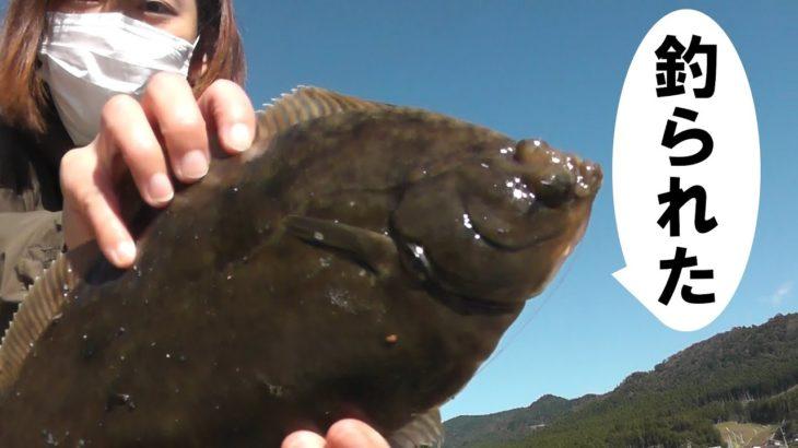 堤防から投げ釣りしてみたら今年初のカレイが釣れた。
