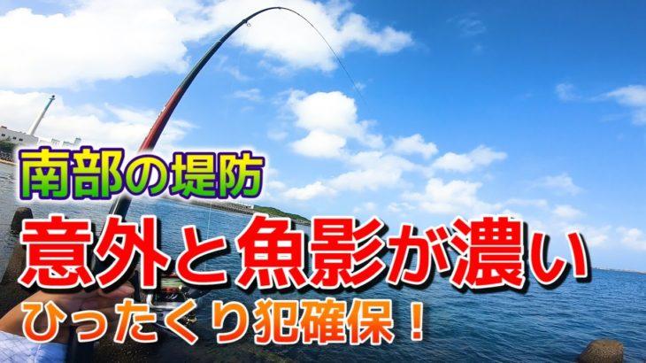 南部の堤防でフカセ対象魚がいろいろ釣れました!