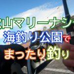 和歌山マリーナシティ海釣り公園でぶっこみ