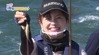 【みさき、釣りはじめました!】平磯海釣り公園でサビキ釣りに挑戦!【ビッグフィッシング】