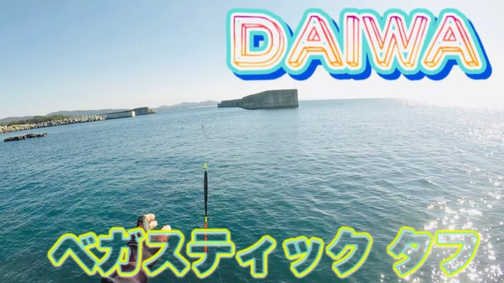【#33Daiwaベガスティックタフ】クロフカセ釣り‼️針掛かり抜群‼️