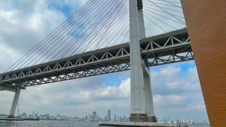 ヘチ釣り初心者の記 横浜沖堤防 白灯