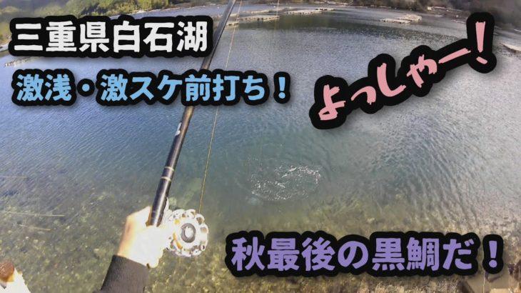 浅スケの『前打ち黒鯛!』11月終盤バトル!又もオマケ動画あり(笑)