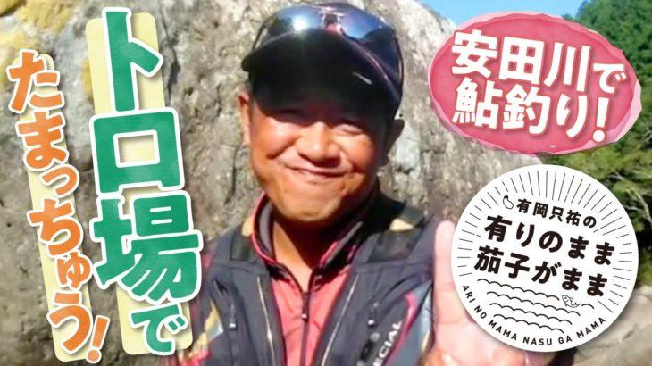 【鮎釣り】安田川のトロ場にたまっちゅう!