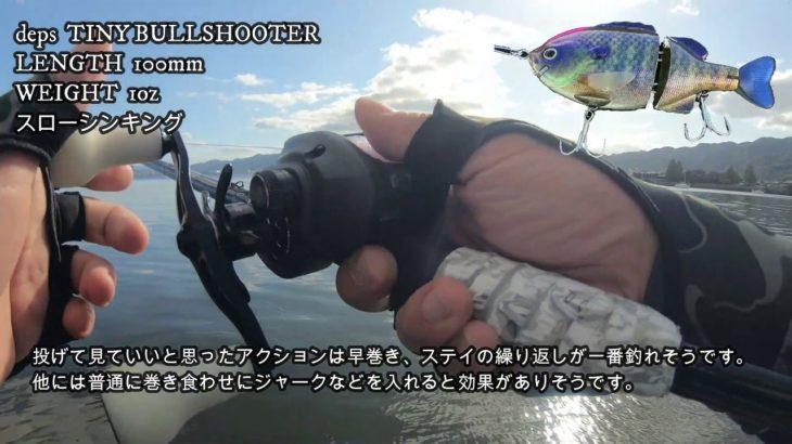 実釣‼タイニーブルーシューター※後半ブラックバス釣ります‼
