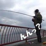 【平磯海釣り公園】カゴ釣りで、のんびりと小物釣り、のはずが・・・マグレの一匹が釣れました。最後に水中撮影も再挑戦してみました。