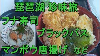滋賀県草津市 琵琶湖 珍味探求と街歩き ブラックバス, ふなずし, マンボウ初食べ