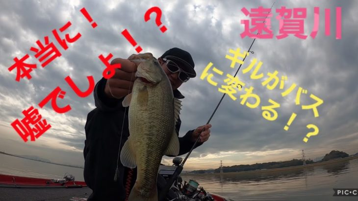 嘘でしょ!?ギル🐟がバス🐟に変わる!? 遠賀川 バス釣り ナベちゃんねる