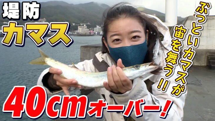 GO!GO!九ちゃんフィッシング #401 「釣ったら食べる!堤防カマス釣り!(前篇) ウキ釣りで大物ゲットならオシャレレシピ!」