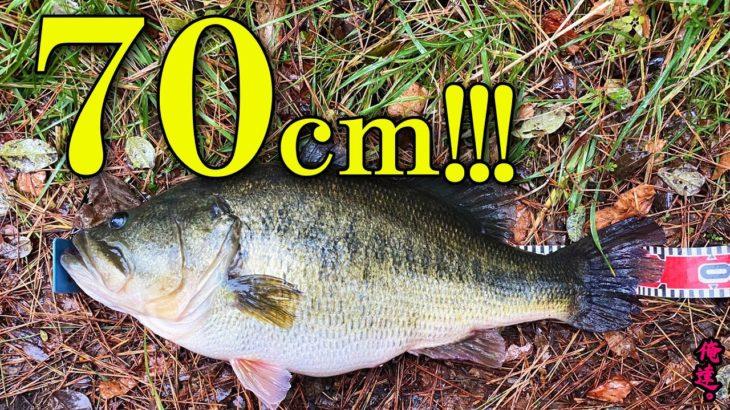【衝撃ニュース】琵琶湖で70センチを釣るワザ。