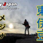 【東伊豆でメジナ釣り】東伊豆の有名な磯でメジナ釣りに再チャレンジした結果…!