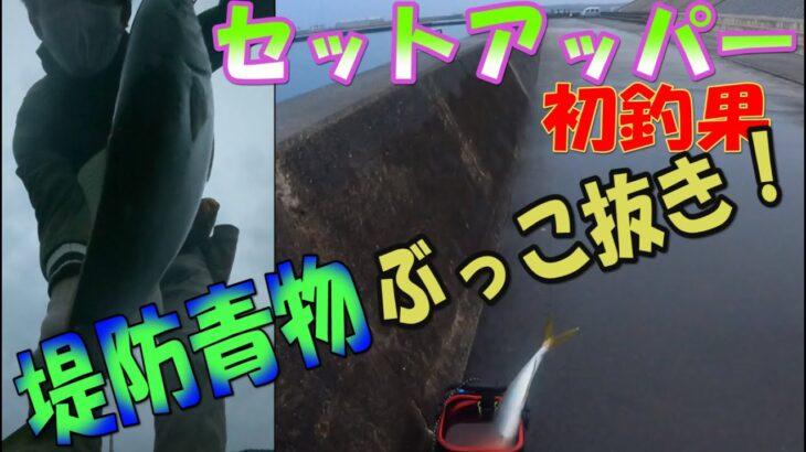 静岡県御前崎 冬の堤防青物釣り セットアッパーでぶっこ抜き!