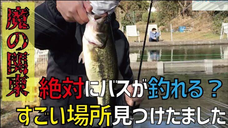 【バス釣り】真冬の東京!初心者ででもブラックバスが釣れる場所!?恩方国際釣堀場【関東】