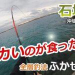 デカいのが食った⁉︎【石垣島沖堤防で全層釣法ふかせ釣り】