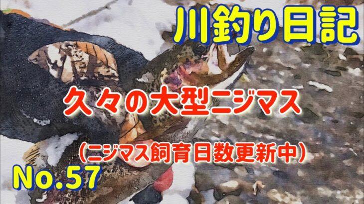 【北海道十勝の川釣り】久々の大型ニジマス【川釣り日記57】