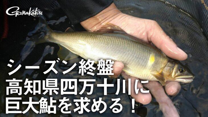 【G WORLD】#3 シーズン終盤 高知県四万十川に巨大鮎を求める!
