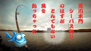 #荒川水門前#fishing#シーバス#mancing#釣り【とんでもない魚】まいったー