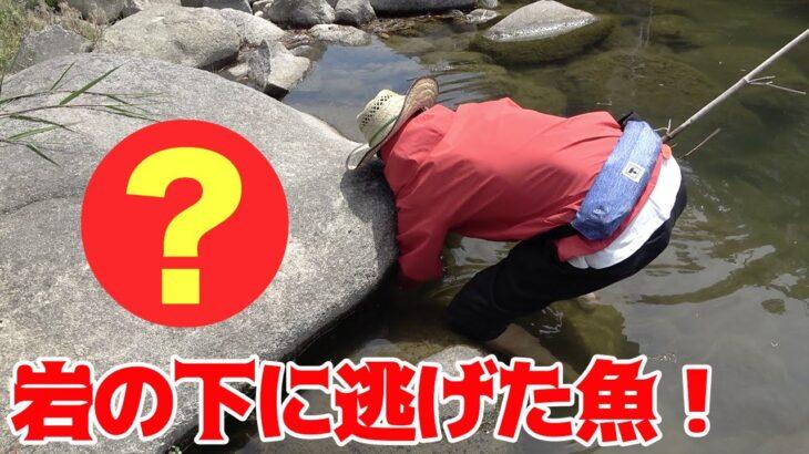 川釣りをしてたら目の前に○○○が現れた!!