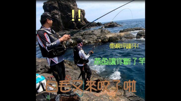 (磯釣) 4k 澎湖東嶼坪鐘仔1 燕魚讓你斷竿信不信!,黑毛,厚殼,烏尾冬,臭肚【阿皓來釣魚#16】Fishing in Taiwan 20210501 Float Fishing