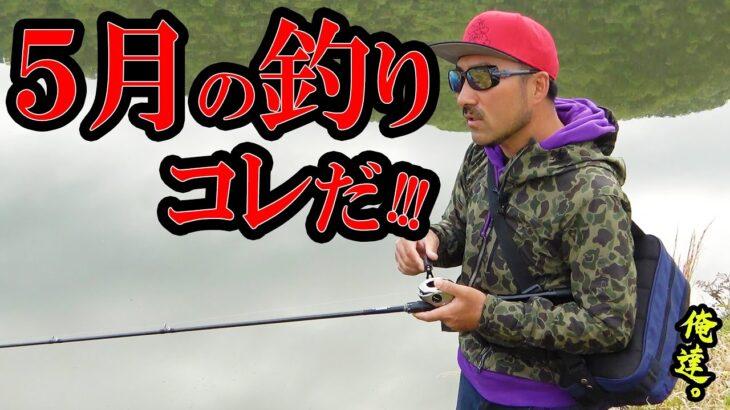 5月中旬はコレが釣れる!