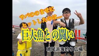 サバののませに巨大魚ヒット!鳴尾浜海釣り広場 fishingmax武庫川店