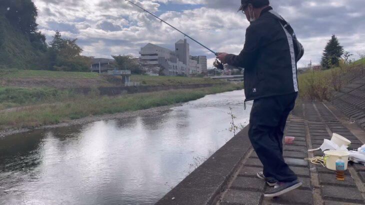 大栗川でオイカワ釣りと多摩川関戸橋の下見。