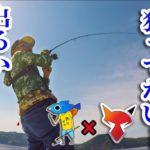 【釣りよかコラボ】ガバチョで青物を釣る伝説。