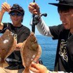 東北の海は豊か過ぎる!美味しい魚が入れ食い!