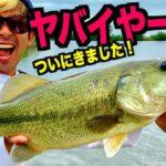 【夏休みバス釣り】激戦区「五三川」でっかい魚を釣り上げろ!!