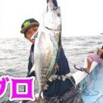 泳がせ釣りの進化形、落とし込み釣りで大爆釣!!!