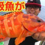 船から根魚を狙ったら高級魚パラダイスだった!!