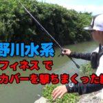 【衝撃映像あり】中2が旧吉野川水系支流をベイトフィネス で挑んだ結果・・