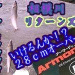 相模川リターンズ2 アーマードフロロで28cmの大鮎は狙えるのか?