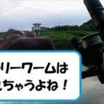 【バス釣り】やっぱりこのワームは釣れる‼