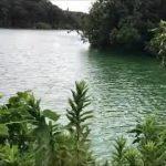 立入禁止ポイント 中山池 旧バス釣りポイント 愛知野池群