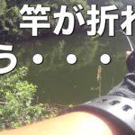 #1 バス釣り初心者が初めてデカバスに遭遇 / 魚切ダム / おかっぱり / 広島 / バスフィッシング / ZESTIEN