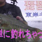 【バス釣り】 東岸 おかっぱり 簡単!