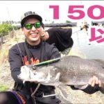 みんなでお祭り騒ぎ!!150匹以上の怪魚が釣れた!三代目JSB山下健二郎コラボ #5